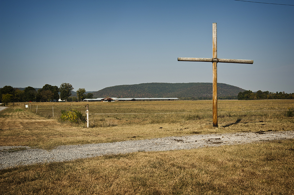 Large Cross In Pasture